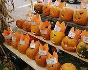 Student's Jack o Lanterns, Keene Pumpkin Festival