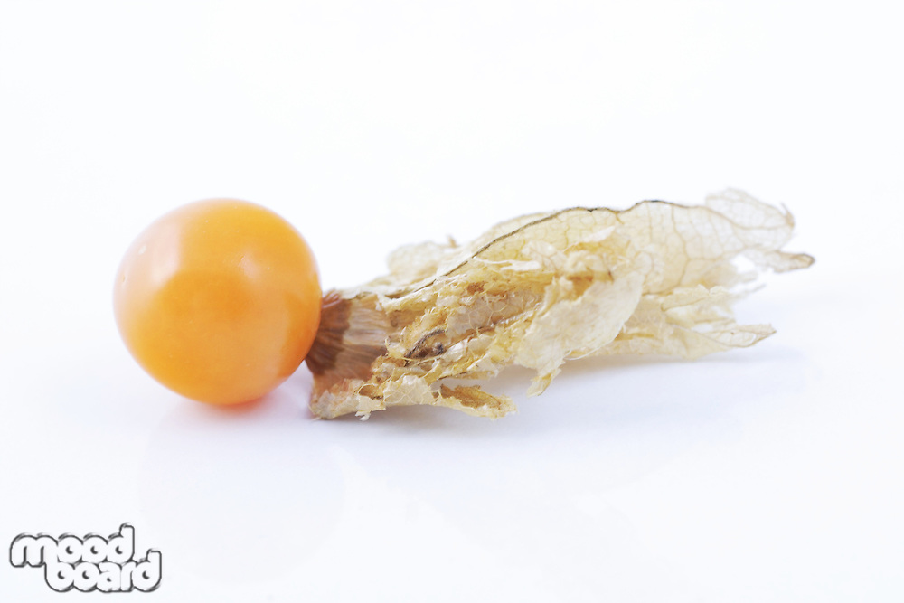 Close-up of physalis fruit on white background