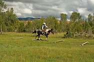 Competitive Trail Ride, Paint Horse, Mantle Ranch, Three Forks, Montana, MODEL RELEASED, PROPERTY RELEASED