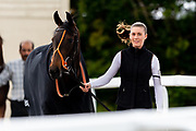 Aroha ridden by Callum Shepherd and trained by Brian Meehan in the Mj Church Contracting Ebf Stallions Fillies' Novice Stakes (Plus 10 Race) race.  - Ryan Hiscott/JMP - 24/05/2019 - PR - Bath Racecourse - Bath, England - Friday 24th May 2019 Race Meeting at Bath Racecourse