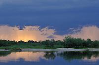 Prypiat river, Prypiat National Park, Belarus