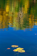 Lily pads and autumn reflection in Crow (Kakagi) Lake in Unorganized Kenora District and the township of Sioux Narrows-Nestor Falls<br />North of Nestor Falls<br />Ontario<br />Canada