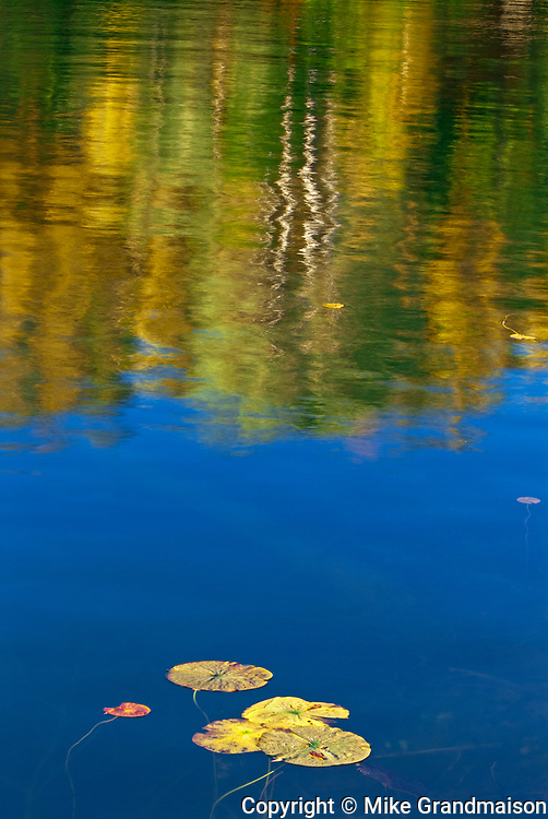 Lily pads and autumn reflection in Crow (Kakagi) Lake in Unorganized Kenora District and the township of Sioux Narrows-Nestor Falls<br />