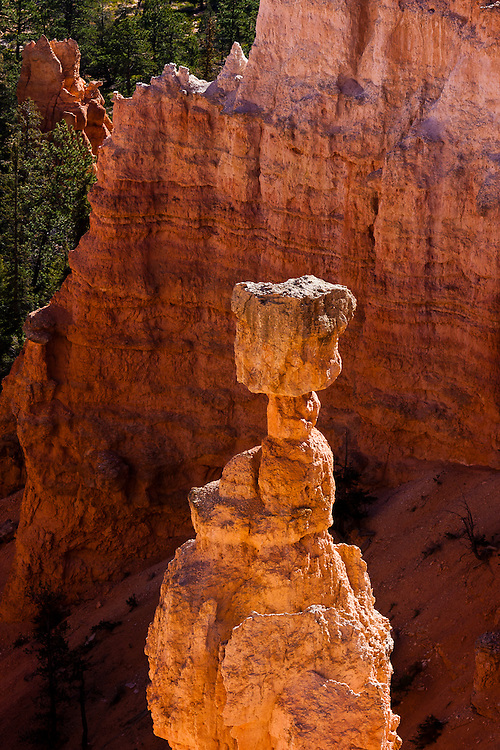 The adequately named Thor's Hammer is one of the most distinctive hoodos in Bryce Canyon Natonal Park