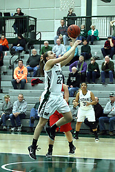 10 January 2015:  Alina Lehocky during an NCAA women's division 3 CCIW basketball game between the Carthage Reds and the Illinois Wesleyan Titans in Shirk Center, Bloomington IL