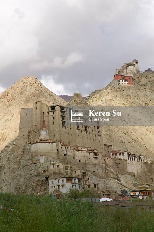 Leh Palace and Namgyal Tsemo Gompa up on the hill, Leh, Ladakh, India