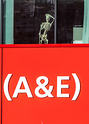 © Licensed to London News Pictures. 13/02/2020. London, UK. St Thomas's Hospital this morning showing a skeleton in the window of A&E as the first London Coronavirus victim is currently being treated there. Photo credit: Alex Lentati/LNP
