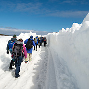 A line of tourists walking through along a makeshift roadway plowed through the deep snow towards the airstrip at Base Presidente Eduardo Frei Montalva on King George Island in Antarctica.