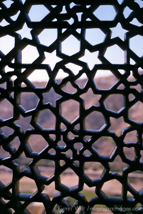 Asia, India, Amer. Amber Palace lattice window.