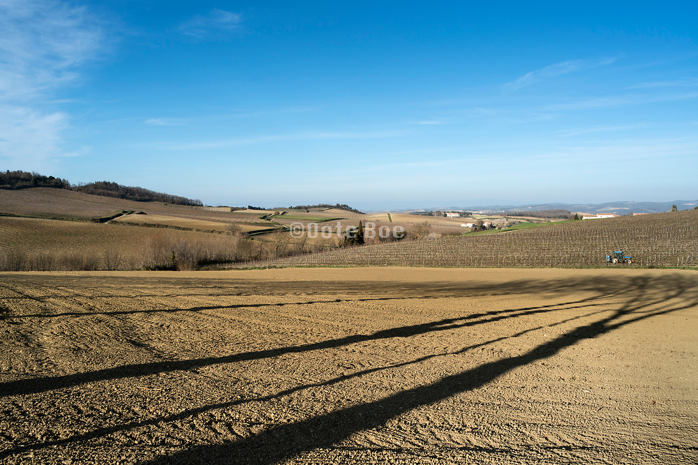 bare agricultural  field during early spring in the Aude Languedoc France