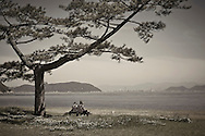 couple under tree Naoshima Island Japan