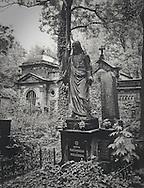 The New Cemetery, Prague  No. 3