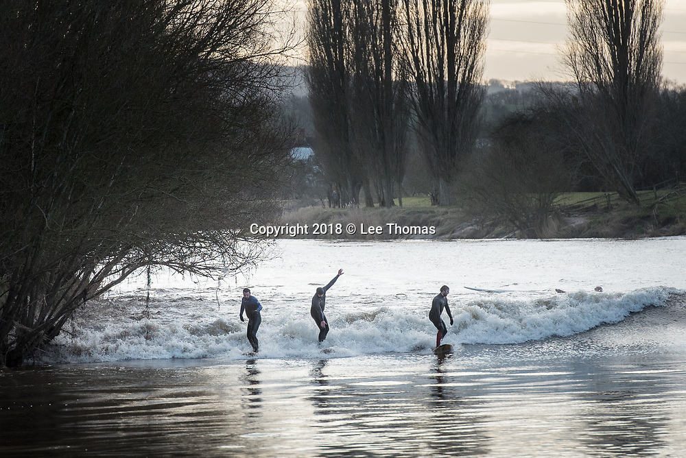 Minsterworth, Gloucestershire, UK. 2nd February 2018. Scores of Severn surfers were out in force today for the biggest bore of the year so far. Spectators lined the river banks to witness the four star bore and as no five star bores are predicted in 2018 this morning's natural phenomenon attracted hundreds of fans from all over the UK and beyond. The Severn Bore is generated by the Atlantic Ocean tide entering the Bristol Channel and forcing its way into the Severn Estuary, filtering into a narrow channel and causing the water to rise by anything up to 15 metres. The water reaches speeds of up to 20kmph as it nears Minsterworth and, as the width of the River Severn narrows, becomes held up causing the natural bore phenomenon. Pictured: Surfers ride the bore at Minsterworth.  // Lee Thomas, Tel. 07784142973. Email: leepthomas@gmail.com  www.leept.co.uk (0000635435)