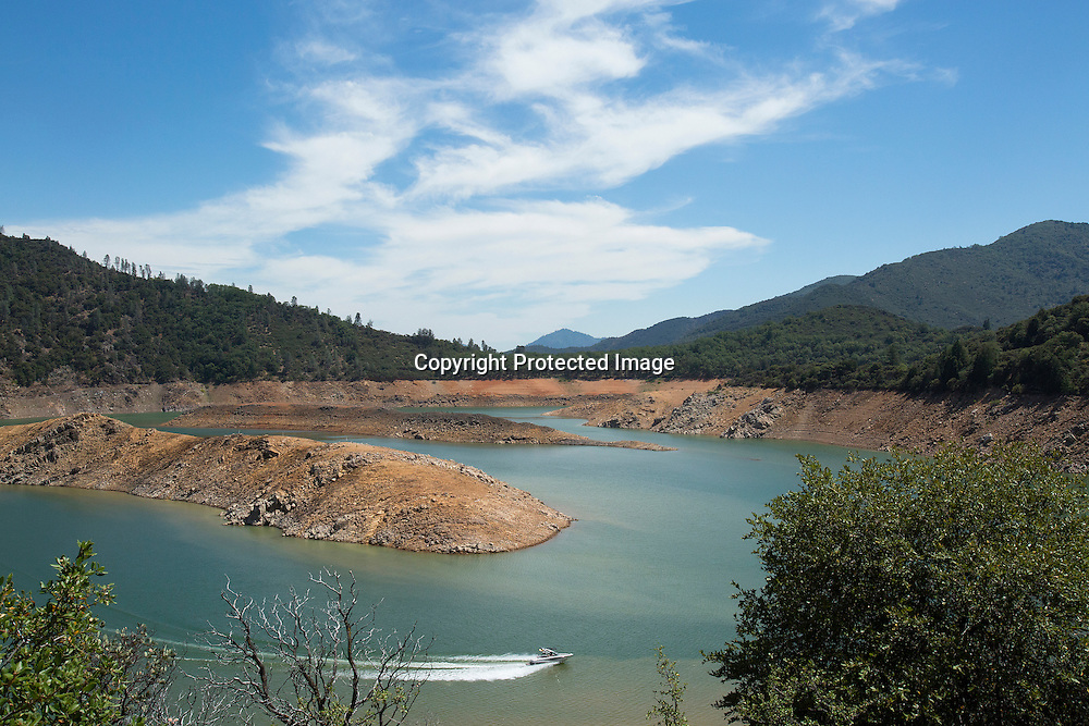 A shrinking arm of Shasta Lake reservoir located in Northern California which is now at 40 percent capacity as the severe drought continues to affect California