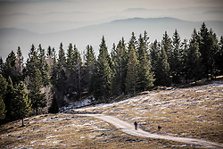Men walking in mountains with his dog, on December 2, 2016 in Velika Planina, Slovenia. Photo by Vid Ponikvar / Sportida