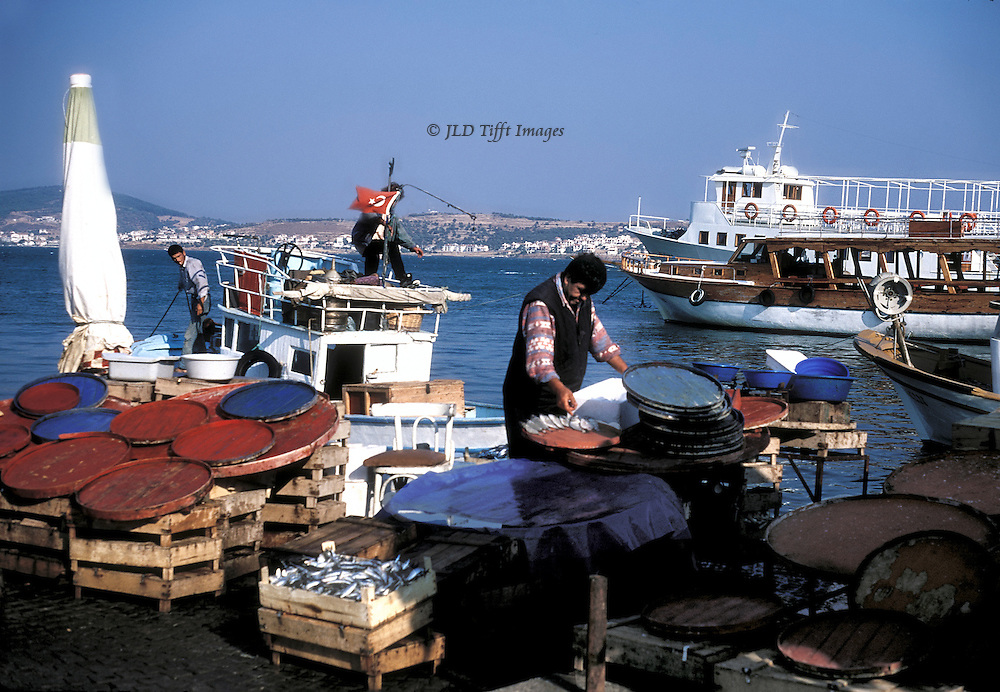 The little harbor of Ayvalik accommodates both fishermen, tourism, and ferries to nearby islands.  On the dock, a fisherman deals with a catch; several boats in the background: another fishing vessel ties itself up, a pleasure boat passes by, and so on.