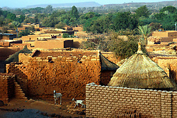 BURKINA FASO, Bani, 2007. The village is almost wholly built of mud and local wooden beams, as are the seven mosques that dot the landscape.