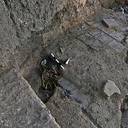Ziyaret Tepe Archaeological Project, Ziyaret Tepe,