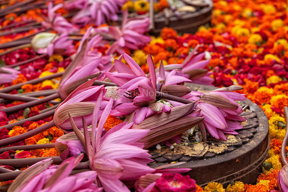 A carpet of lotus blossoms and marigolds adorn stone carvings commemorating where the Buddha practiced walking meditation following his enlightenment at at the Mahabodhi Temple in Bodhgaya India.