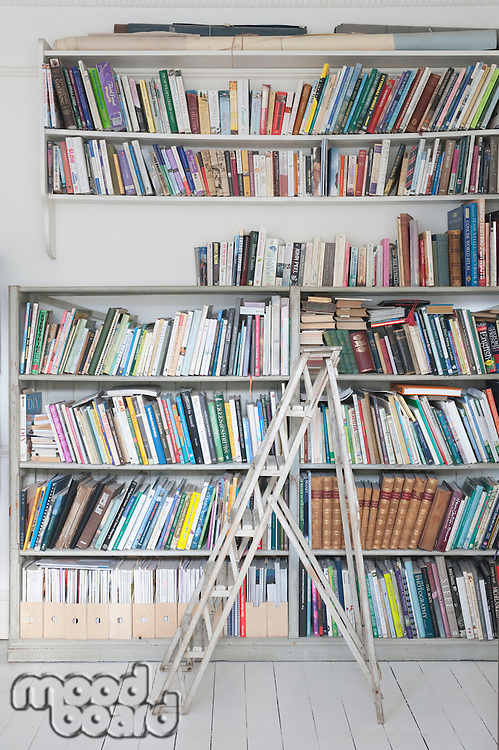 Step ladders and shelves of books