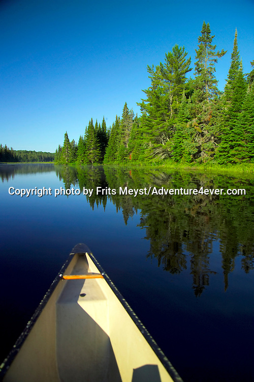 Algonquin Park, Ontario, Canada, July 2006. Hailstorm Creek is the territory of lillies, spruce, moose and the Common Loon. The Algonquin Provincial Park consists of many lakes that can be explored by canoe and which are connected by portages. Photo by Frits Meyst/Adventure4ever.com