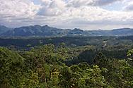 Pine tree covered hills in Pinar del Rio, Cuba.