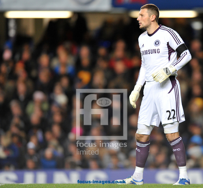 Picture by Daniel Hambury/Focus Images Ltd. 07813 022858.29/11/11.Ross Turnbull of Chelsea during the Carling Cup quater final match against Liverpool at Stamford Bridge stadium, London.