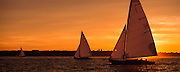Mischief and Shona, S Class sailing at sunset.