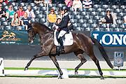 Helen Langehanenberg - Straight Horse Ascenzione<br /> FEI World Championships Young Dressage Horses 2019<br /> © DigiShots
