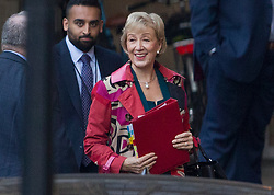 © Licensed to London News Pictures. 15/11/2018. London, UK. Andrea Leadsom is seen in the courtyard of Parliament. Prime Minister Theresa May has made a statement to MPs in Parliament on the EU withdrawal agreement today after cabinet agreed on the proposal. Photo credit: Peter Macdiarmid/LNP