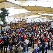 Migliaia di visitatori lungo il Decumano<br /> Expo 2015  Milano, 17/10/2015.