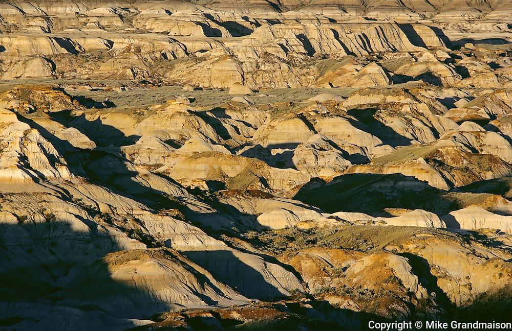 Badlands in morning light<br /> Dinosaur Provincial Park<br /> Alberta<br /> Canada