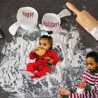 Scheel/Bryant 2018 Family Christmas Cookies