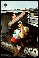 Man in boat lifts block of crude rubber onto back of dockworker to load on truck; Eirunepe, AM Brazil