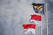 May 21, 2014: Monaco Grand Prix: Monaco flags