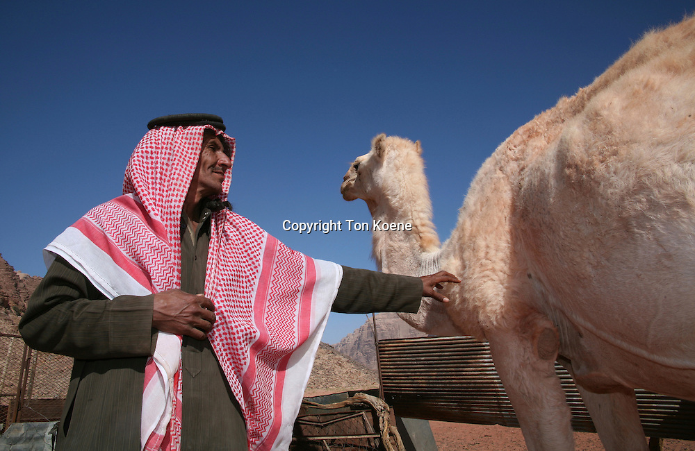 Portrait of a Bedouin man, Jordan
