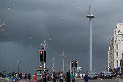 © Licensed to London News Pictures. 22/07/2017. Brighton, UK. Dark clouds hang over Brighton and Hove as the seaside resort if hit by rain and powerful gusts of wind. Photo credit: Hugo Michiels/LNP
