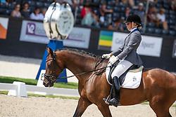 Jancarikova Eva, CZE, Iffendic<br /> World ChampionshipsYoung Dressage Horses<br /> Ermelo 2018<br /> © Hippo Foto - Dirk Caremans<br /> 02/08/2018