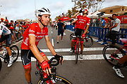 Arrival, Fabio Felline (ITA - Trek - Segafredo), injury, during the UCI World Tour, Tour of Spain (Vuelta) 2018, Stage 6, Huercal Overa - San Javier Mar Menor 155,7 km in Spain, on August 30th, 2018 - Photo Luca Bettini / BettiniPhoto / ProSportsImages / DPPI