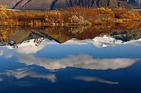 Hauststemning í Þjóðgarðinum Skaftafelli. Hafrafell og Öræfajökull með Hvannadalshnjúk speglast í tjörn. Autmn mood in Skaftafell National Park, Iceland. Mountain Hafrafell and Iceland's highest peak - Hvanndalshnjukur mirror in a small pond.