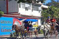 Horses in Bayamo, Granma, Cuba.