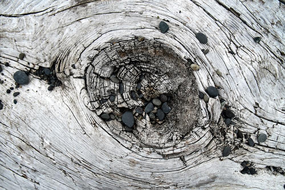 Pebbles & Log