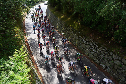The peloton speed through the woods during Stage 9 of 2019 Giro Rosa Iccrea, a 125.5 km road race from Gemona to Chiusaforte, Italy on July 13, 2019. Photo by Sean Robinson/velofocus.com