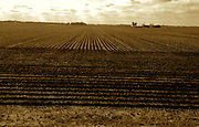 Amtrak Zephyr train land scape views,  Illinois  plowed fields.