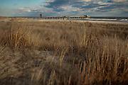 Avalon NJ on Friday January 13, 2012.