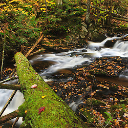 The Cataracts, a waterfall on Frye Brook in Maine's Northern Forest. Fall.