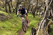 Wilderness riding in Skyline Park, Wilderness Park, Napa Valley, California, USA.