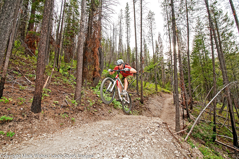 Elijah Weber mountain biking the Forbidden Fruit Trail at Adams Gulch in the Smoky Mountains near the city of Ketchum in central Idaho