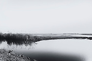 black and white, tal, flint, tal flint photography