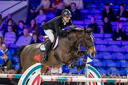 Cobbaut Geoffrey, BEL, Lambada D<br /> Jumping Mechelen 2019<br /> © Hippo Foto - Martin Tandt<br />  27/12/2019